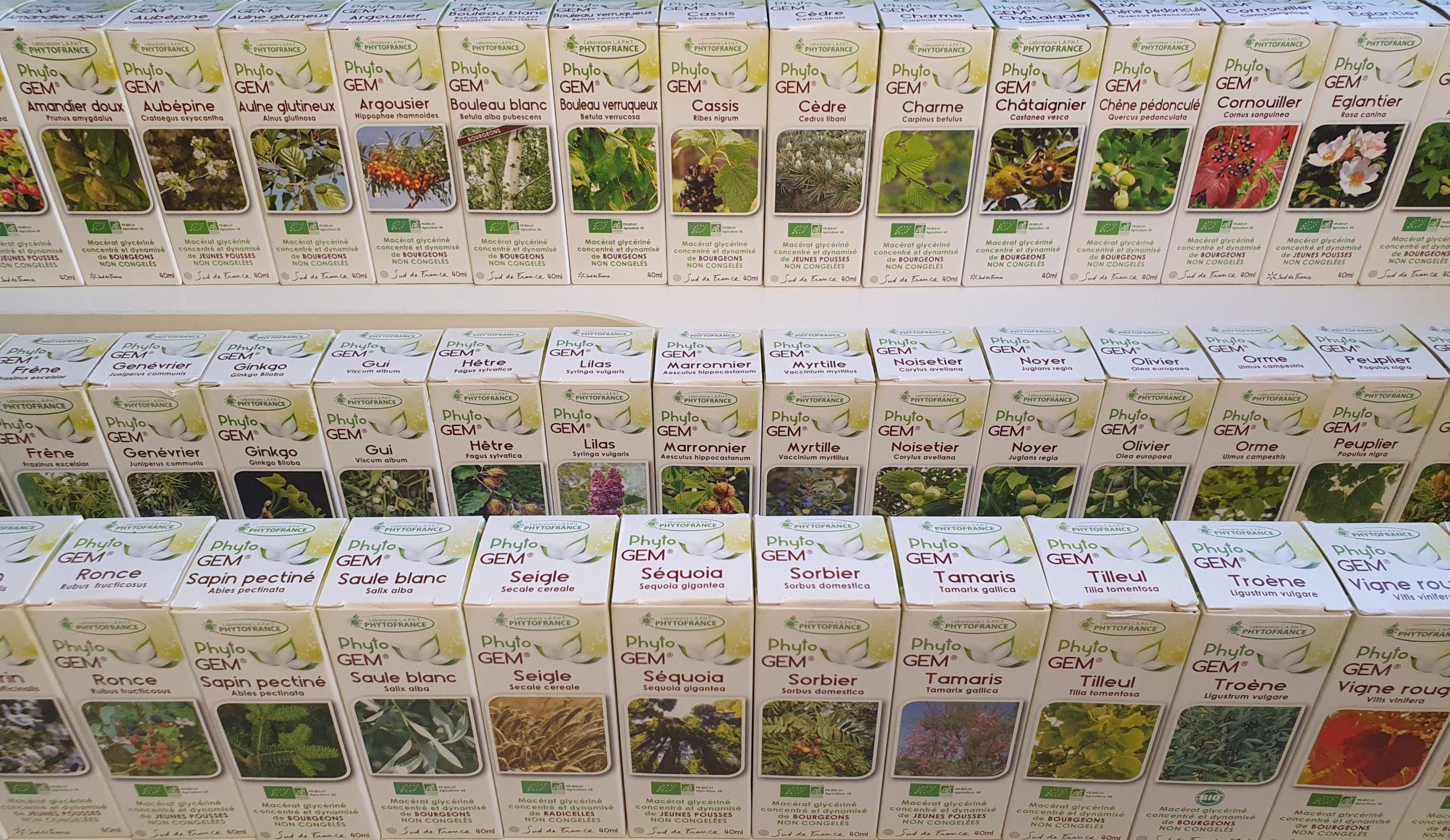 gemmothéraie bourgeons médecine vétérinaire naturelle alternative soins naturels plantes