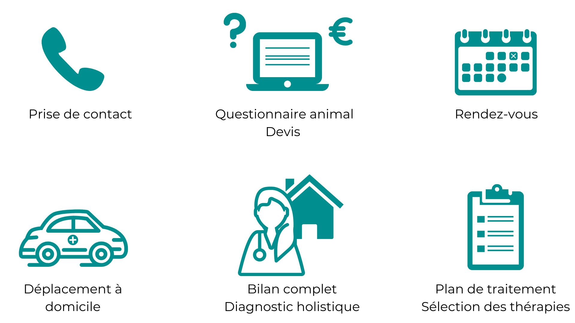 consultation chien chat médecine vétérinaire naturelle alternative soins naturels plantes