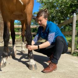 Dr Lucie Deveugle médecine vétérinaire holistique naturelle alternative soins naturels plantes