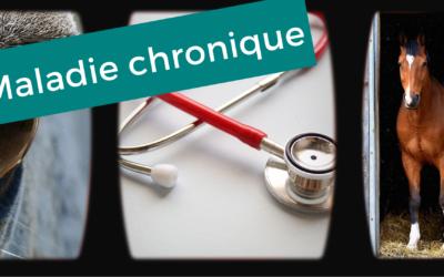 MALADIE CHRONIQUE – Exemple de l'ulcère gastrique chez le cheval
