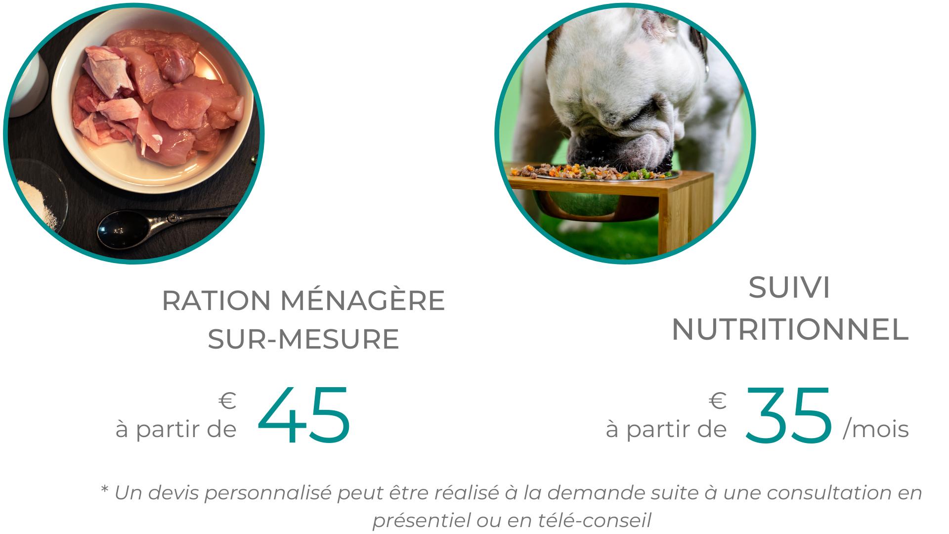 Nutrition alimentation animale chien chat croquettes BARF bi-nutrition ration ménagère